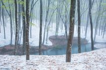 japan-snow-2