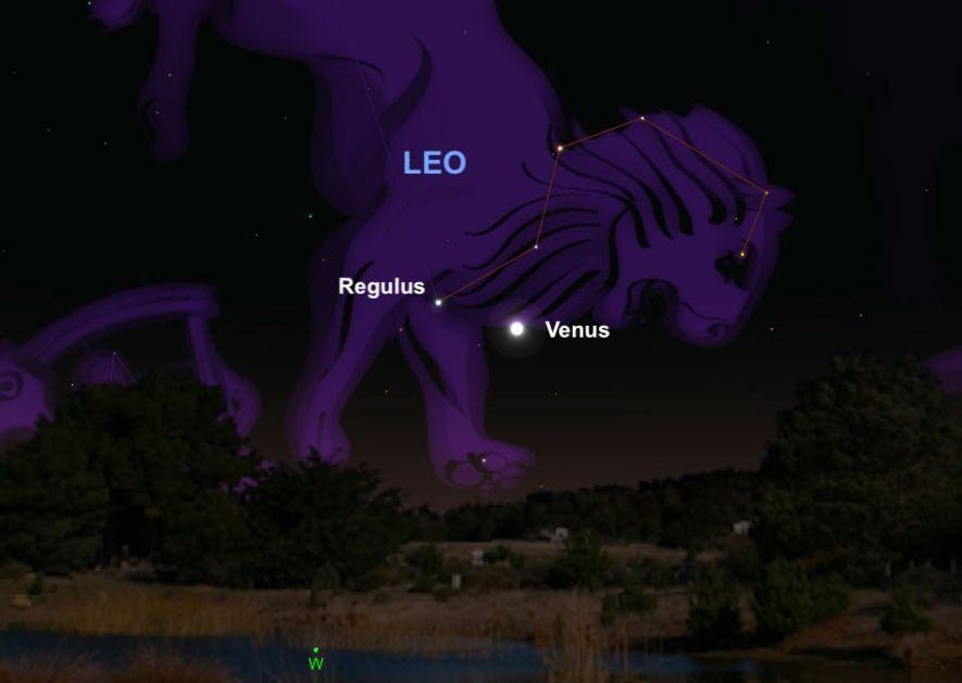 """Die strahlende Venus zieht am 9. Juli am """"Herzen"""" des Sternbilds Löwe vorbei, dem Hauptstern Regulus."""