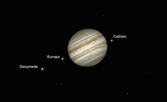 In der Nacht des 10. Juni wird der Jupiter besonders groß und hell erscheinen. Diese Illustration ...