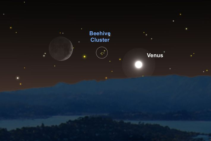 Die Venus und der Mond werden am 16. Juni als Wegweiser dienen, um Messier 44 zu ...