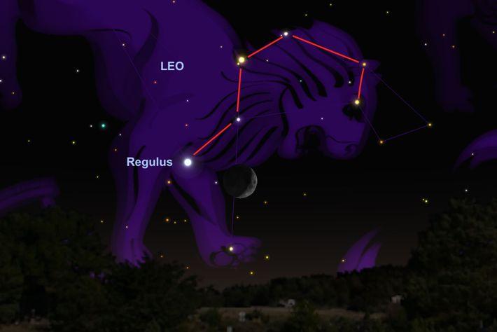 Am 17. Juni wird der Mond am Stern Regulus vorbeiziehen.