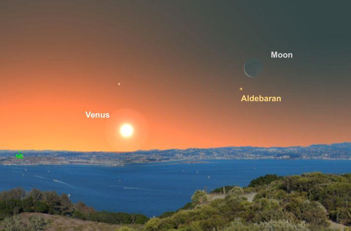 Mit der Mondsichel als Orientierungshilfe können Himmelsbeobachter den Stern Aldebaran vor Sonnenaufgang am 30. Juni leicht ...