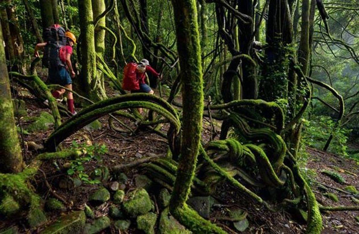 Kletterer auf dem Weg zum Claustral Canyon