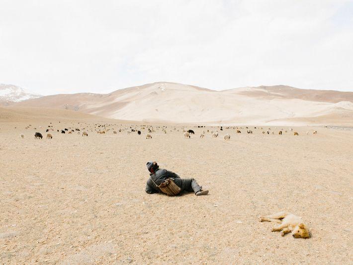 Als der Fotograf Yuri Andries nach stundenlanger Fahrt in völliger Abgeschiedenheit einen Schäfer sah, hielt er ...