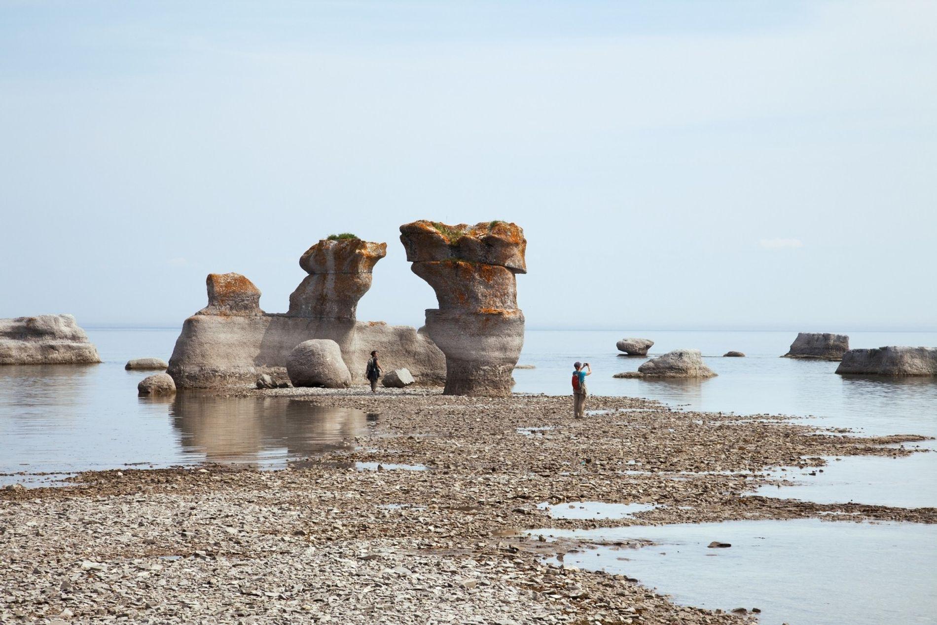 Die Inseln des Mingan-Archipelago-Nationalparks in Québec sind die Brutplätze von Papageitauchern und die Heimat verschiedener Walarten ...