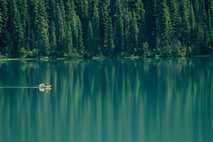 Auch weniger bekannte Nationalparks wie der Yoho-Nationalpark in British Columbia bieten fantastische Möglichkeiten zur Wildtierbeobachtung vor ...
