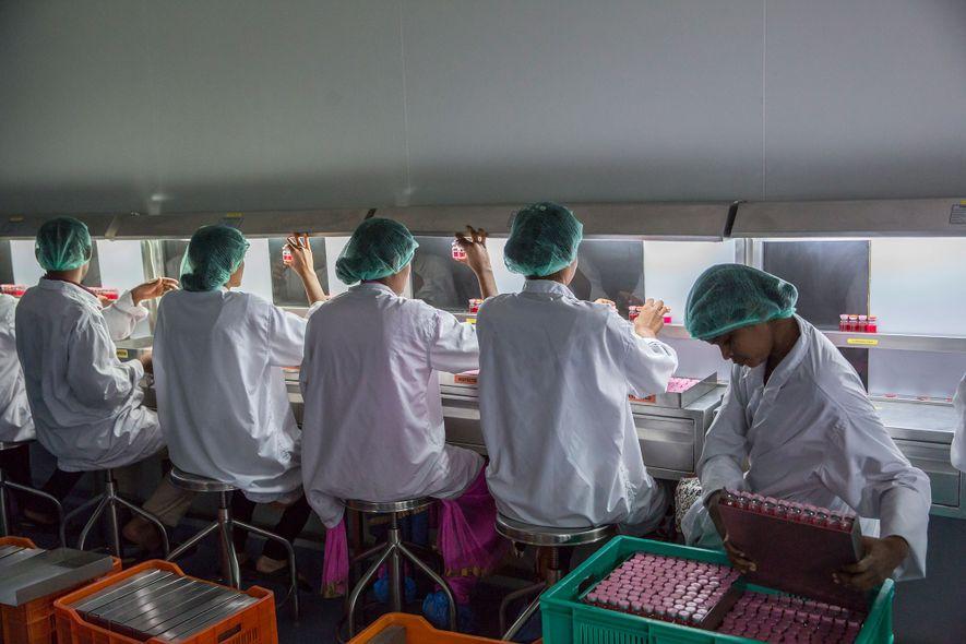Labortechniker untersuchen Proben von Rotaviren