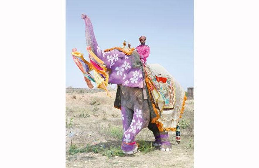 Ein Elefant als Kunstobjekt – darauf ist der mahut, sein Führer, mächtig stolz.