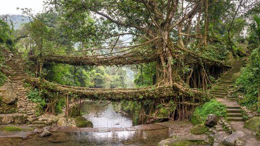 Galerie: Die spektakulärsten Brücken der Welt