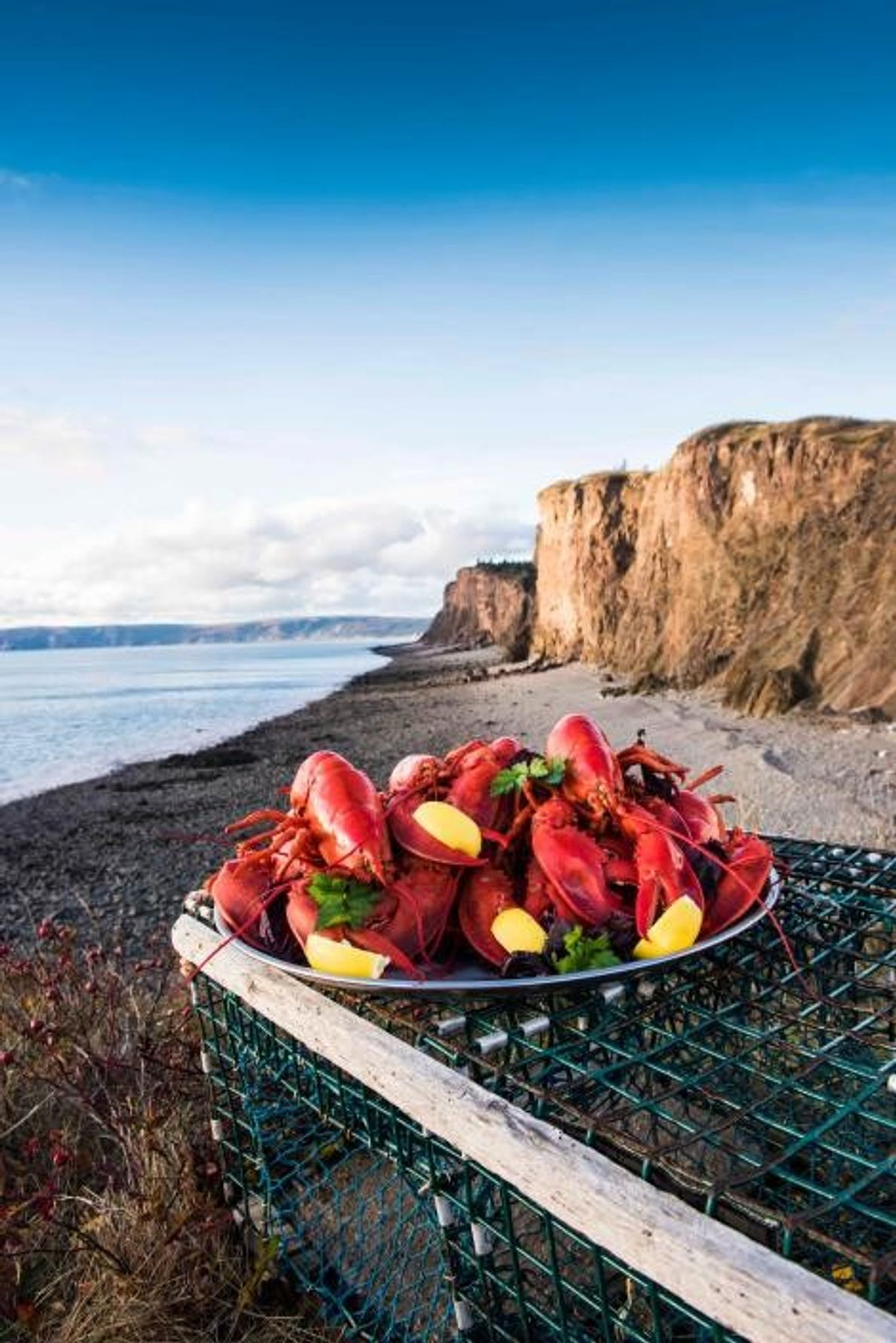 Das Kochen und Verzehren von Hummern direkt am Strand ist für Nova Scotia typisch, für die ...