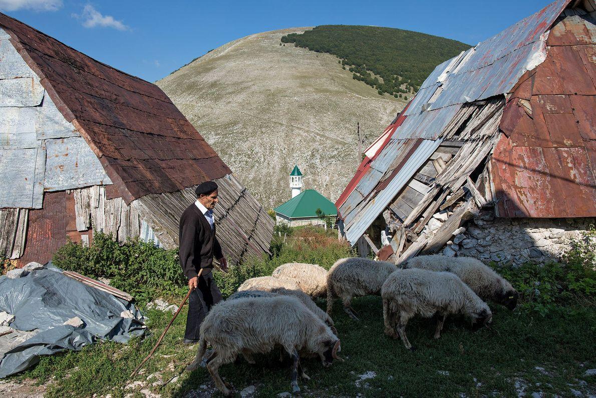 Ein Schäfer führt seine Herde durch das Dorf.