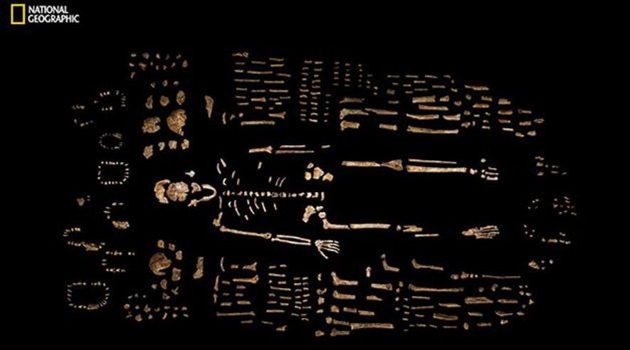 Homo naledi: Neue Menschenart in Südafrika entdeckt