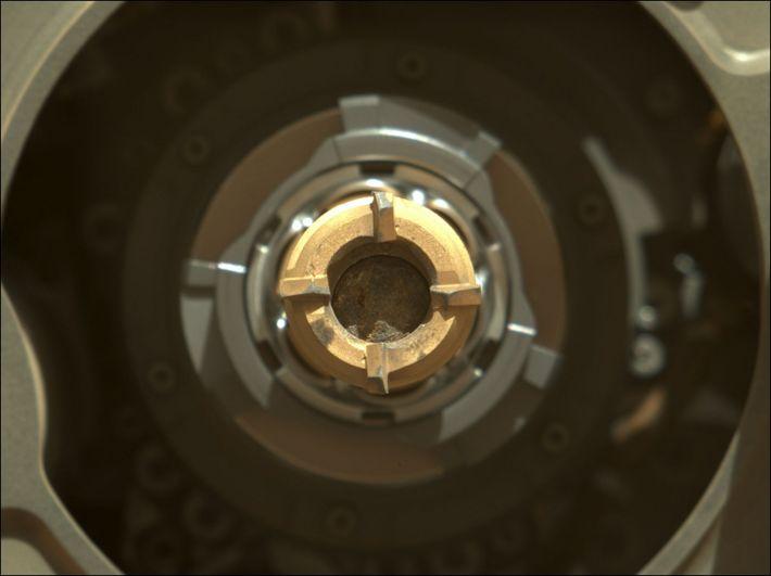 Der entnommene Bohrkern im Probenröhrchen im Bohrkopf der Perseverance