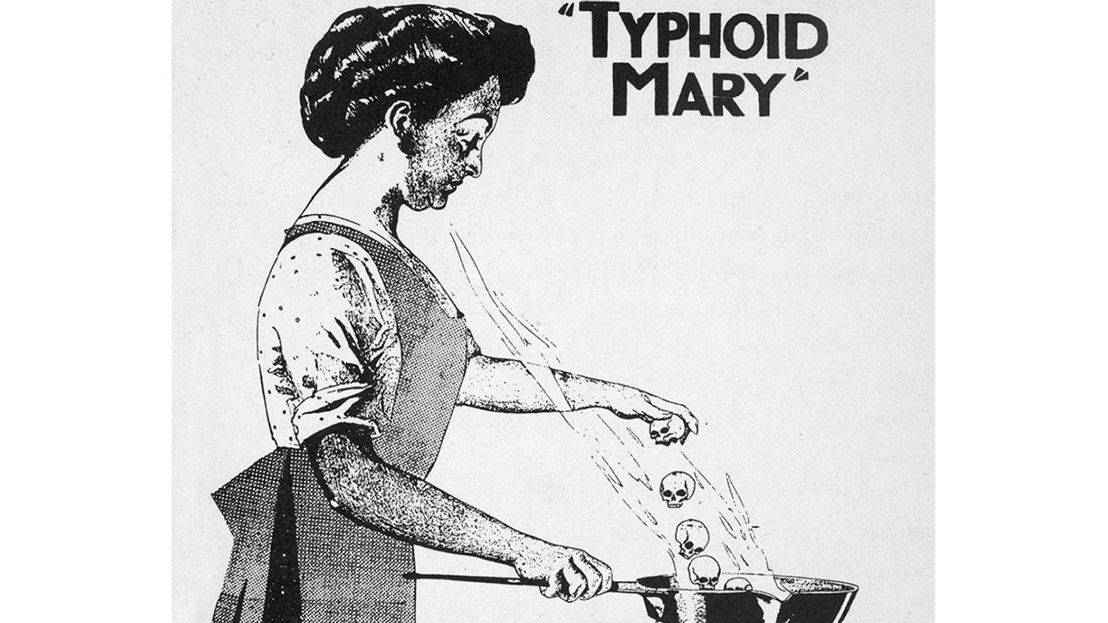 Die irische Köchin Mary Mallon war die erste Person in den USA, die als symptomfreie Überträgerin ...