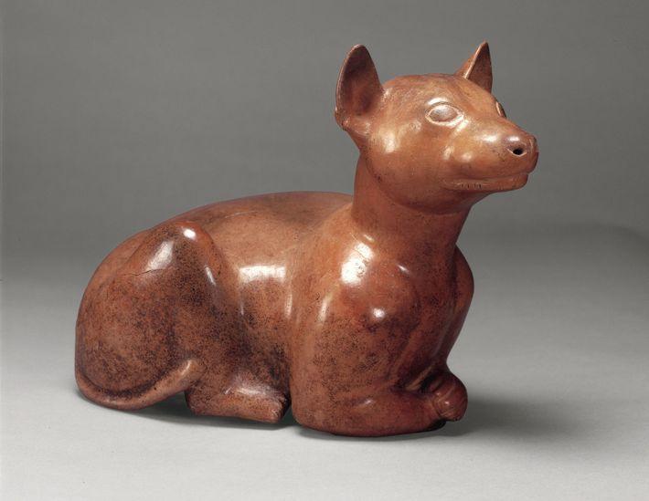 Keramikerzeugnisse in Form von Xolo-Hunden sind ein häufiger Fund in rund 2.000 Jahre alten Gräbern im ...