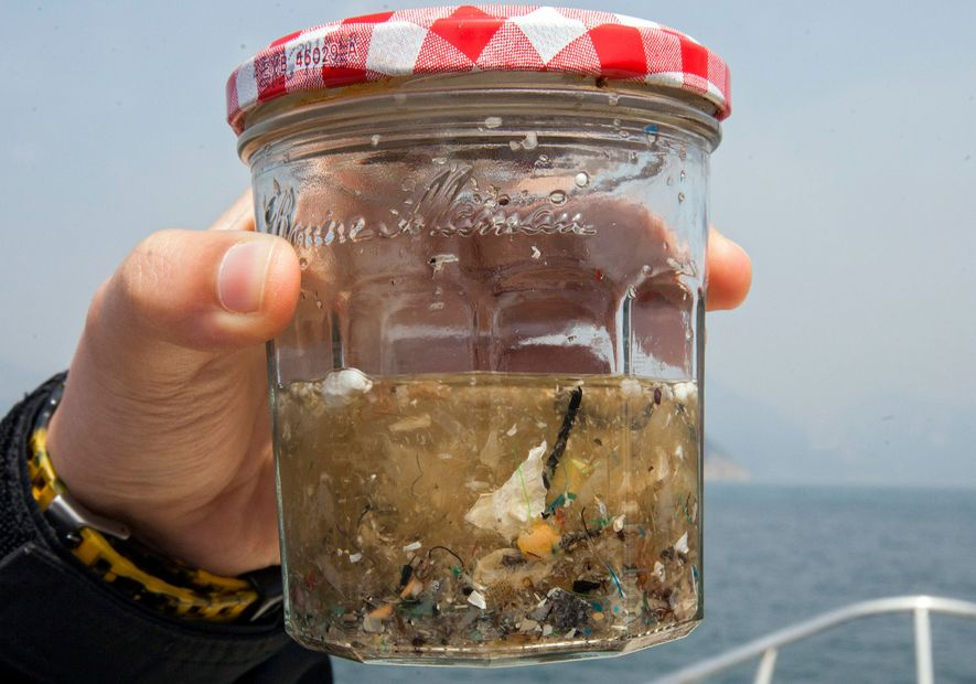 Meerestiere fressen tonnenweise Plastik