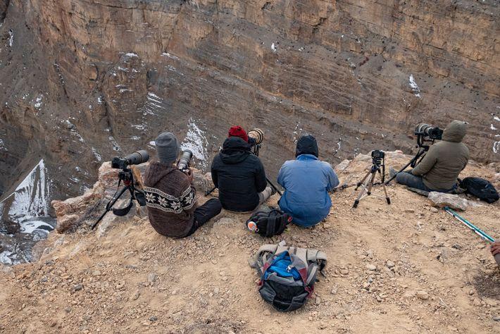 Fotografen jagen den Schneeleopard