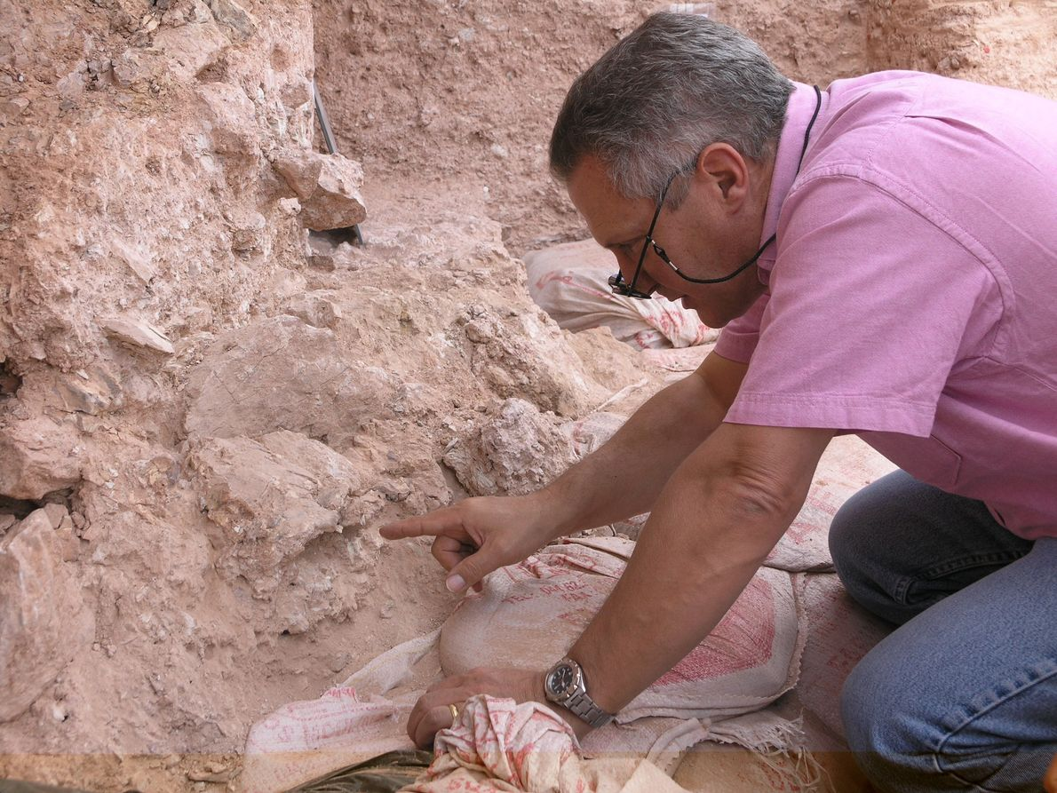 Paläontologe Jean-Jacques Hublin