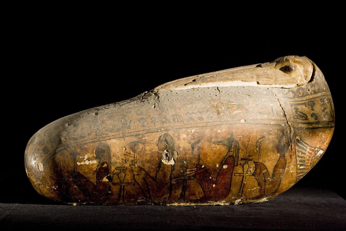 Ägyptische Ibismumie