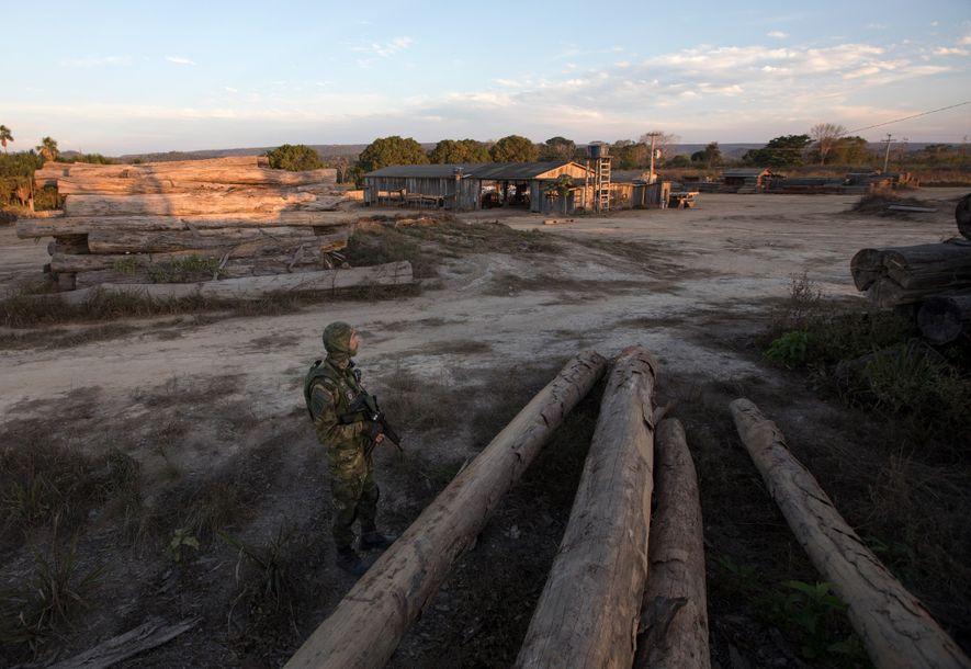 Ein einzelner Beamter des IBAMA hält Wache an einem Sägewerk in Boa Vista do Pacarana, Rondônia. ...