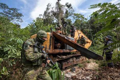 Mord im Amazonas: Der Sturm auf die Ressourcen beginnt