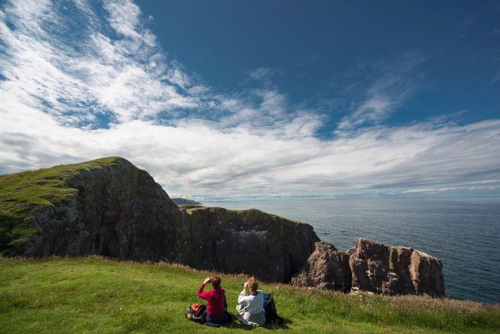 Lebhafte Seevogelkolonien und schwindelerregende Klippen machen St. Abb's Head zu einem der dramatischsten Orte an Schottlands ...