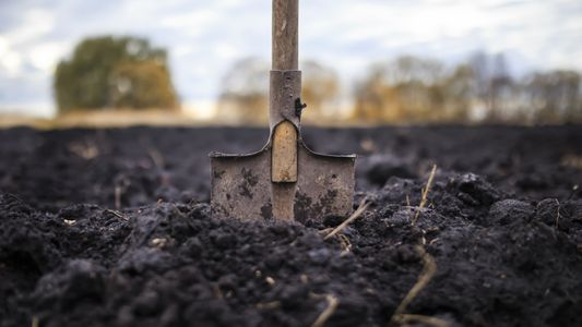 Unter uns: So können wir den Boden retten