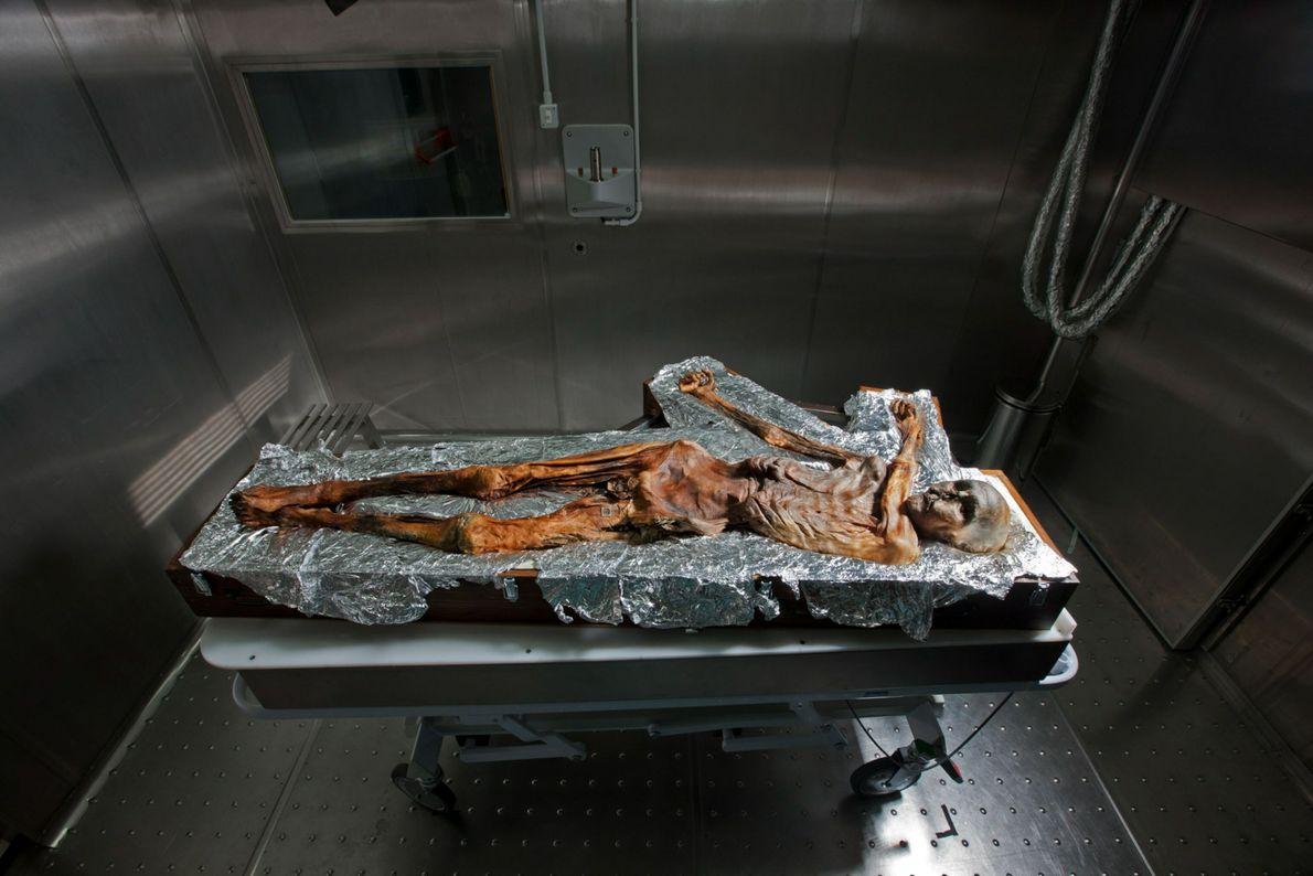 Heute wird Ötzi in einer Kühlkammer verwahrt, in der eine konstante Temperatur von -6,5 Grad herrscht. ...