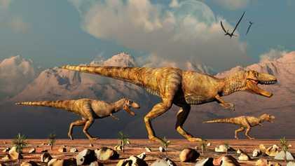 Dino-Buchhaltung: 2,5 Milliarden T. rex zur Kreidezeit