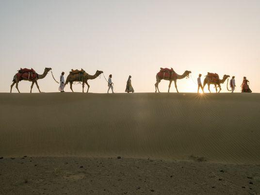 Indien: Wie die Milch ihrer Kamele die Tradition der Raika retten soll