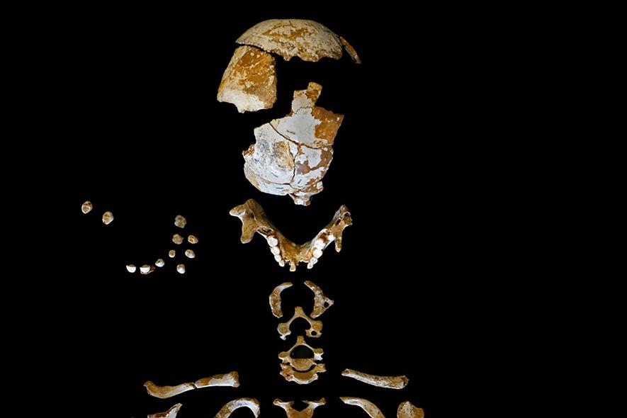 Dieses Neandertaler-Kind wuchs genauso wie heutige Menschenkinder