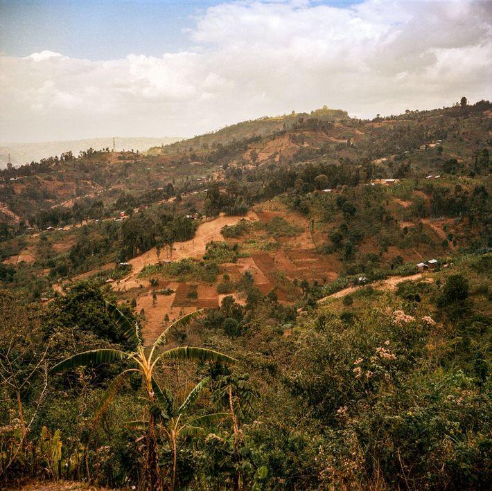 Meisterliches handwerk in Äthiopien