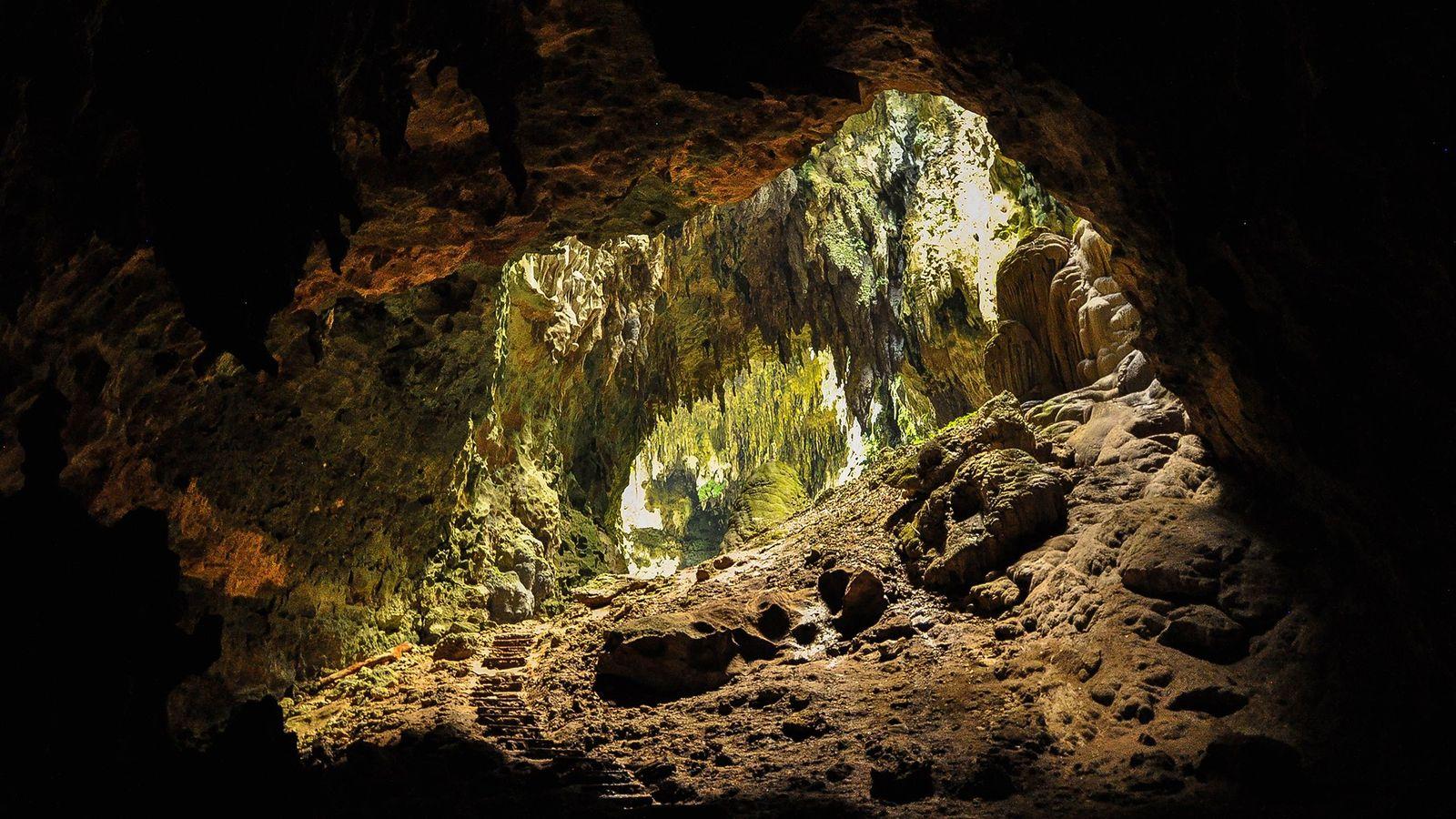Bei Grabungen in der Callao-Höhle auf den Philippinen fanden Forscher Knochen und Zähne, die sie einer ...