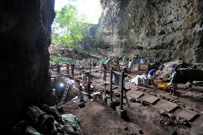 Die Callao-Höhle befindet sich im Norden von Luzon, einer Insel, die in den letzten 2,5 Millionen ...