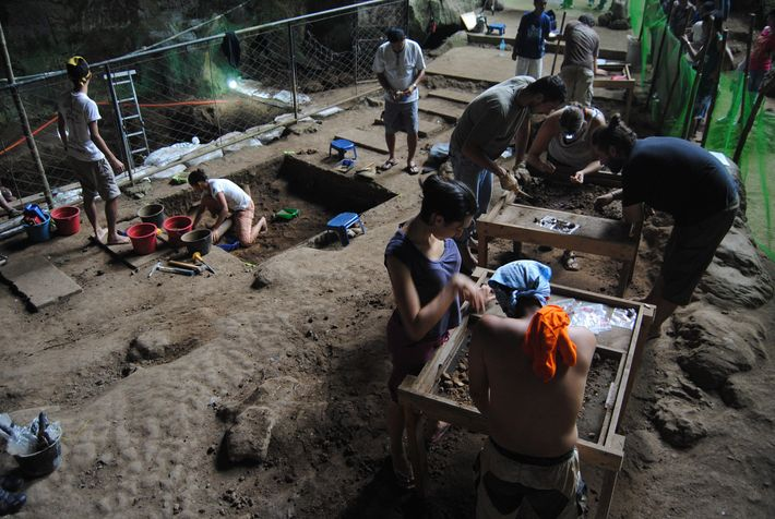 In dieser Aufnahme aus der Callao-Höhle aus dem Jahr 2011 graben sich Forscher vorsichtig durch Lehmschichten.