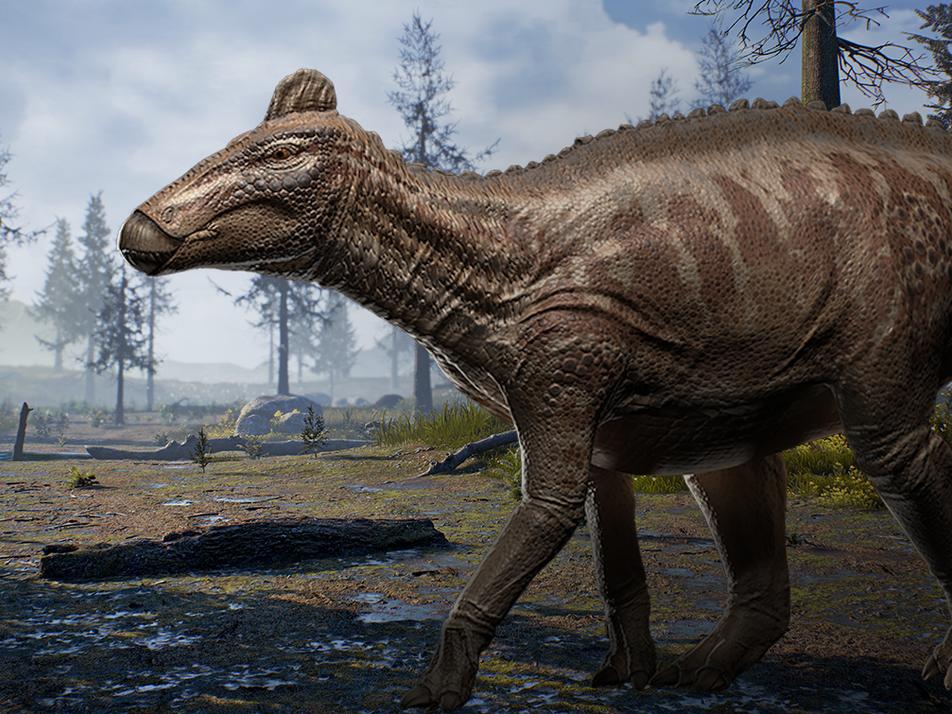 Wie lebte und starb Edmontosaurus? Forscher lüften Millionen Jahre altes Geheimnis