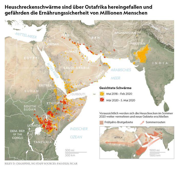 Kartenansicht: Gesichtete Heuschreckenschwärme inOstafrika