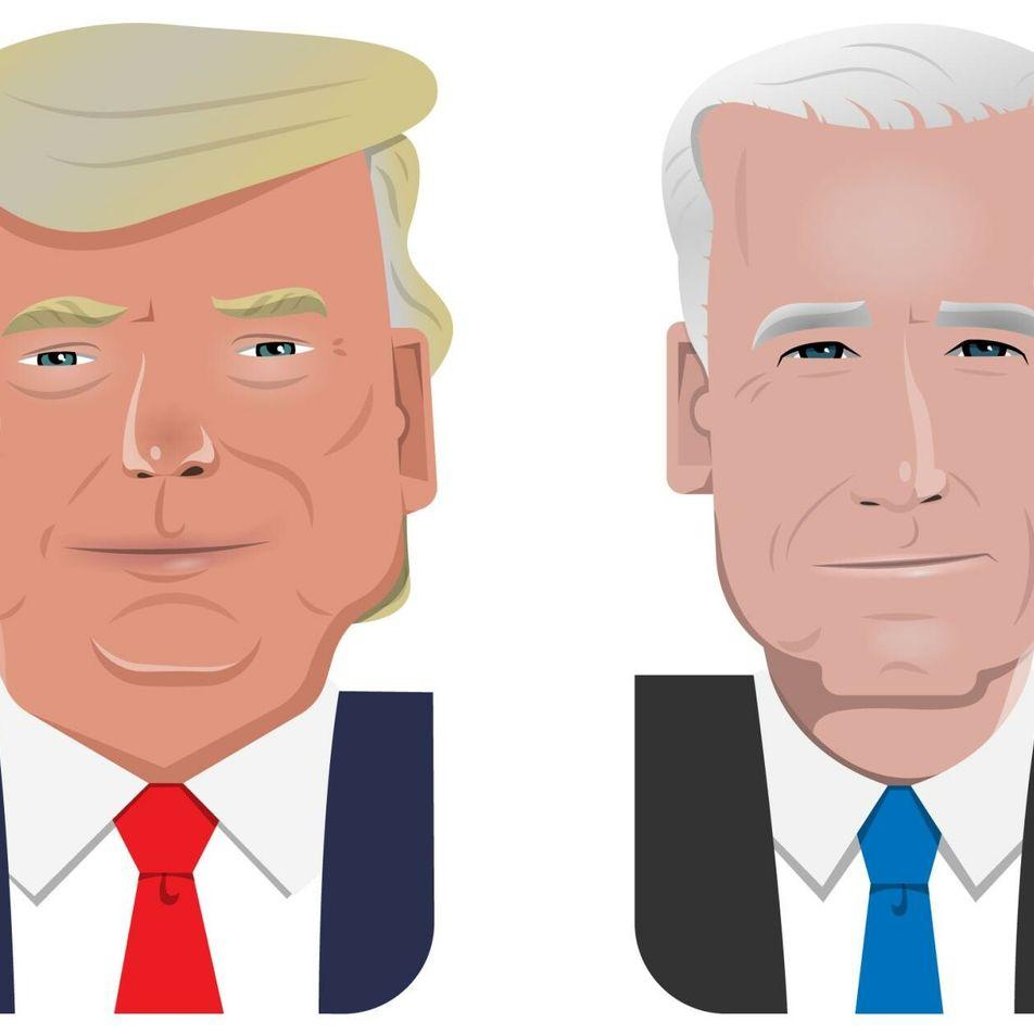 Trump vs. Biden – Ein Kampf um die Umwelt