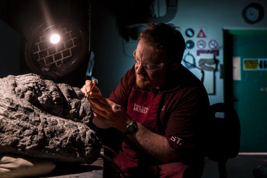 Der präparationstechnische Assistent des Royal Tyrrell Museums, Mark Mitchell, befreit den Fuß des Nodosauriers langsam von dem umgebenden Gestein. Mitchells sorgfältige Arbeit wird die charakteristischen Merkmale des Dinosauriers für lange Zeit erhalten.