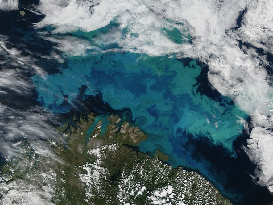 Klimawandel wird die Farbe des Meeres ändern