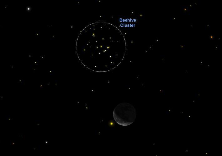 Am 4. Oktober fungiert die helle Mondsichel als praktisches Hilfsmittel, um den Sternhaufen Messier 44 zu ...
