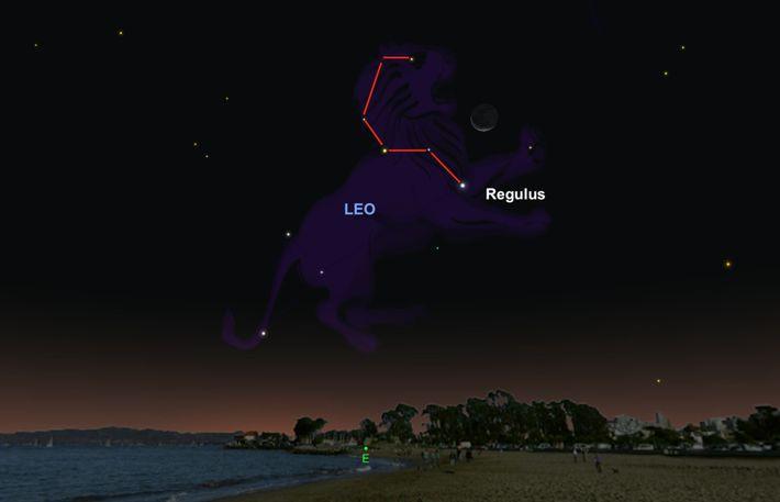 Haltet am 5. Oktober in der Nähe des Mondes nach dem hellen Stern Regulus Ausschau.