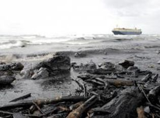 Ausgetretenes Rohöl von Tanker- oder Bohrinsel-Unfällen wird an die Küsten angespült und bedroht die empfindlichen Ökosysteme.