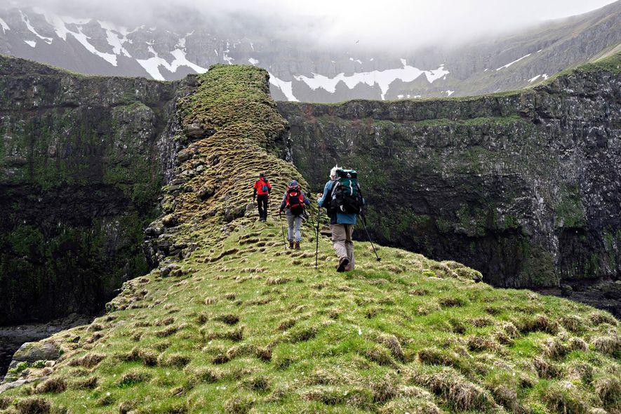 Wanderer folgen einem hochgelegenen, moosbewachsenen Pfad im isländischen Naturschutzgebiet Hornstrandir. Das Gebiet kann nur per Fähre ...