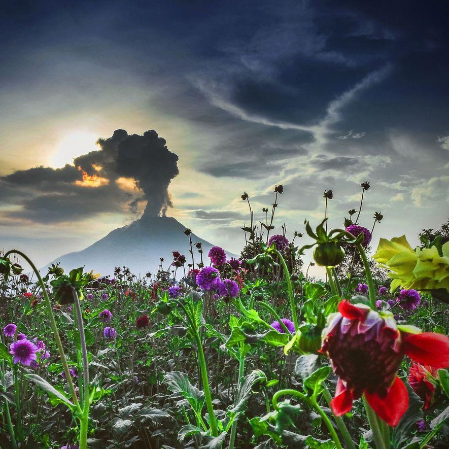 Feuerberge in Aktion: Wenn die Vulkane der Welt erwachen