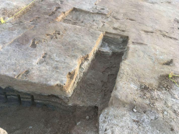 Bei Ausgrabungen im White-Sands-Nationalpark wurden in mehreren Bodenschichten Fußspuren gefunden, die über mehrere Tausend Jahre am ...