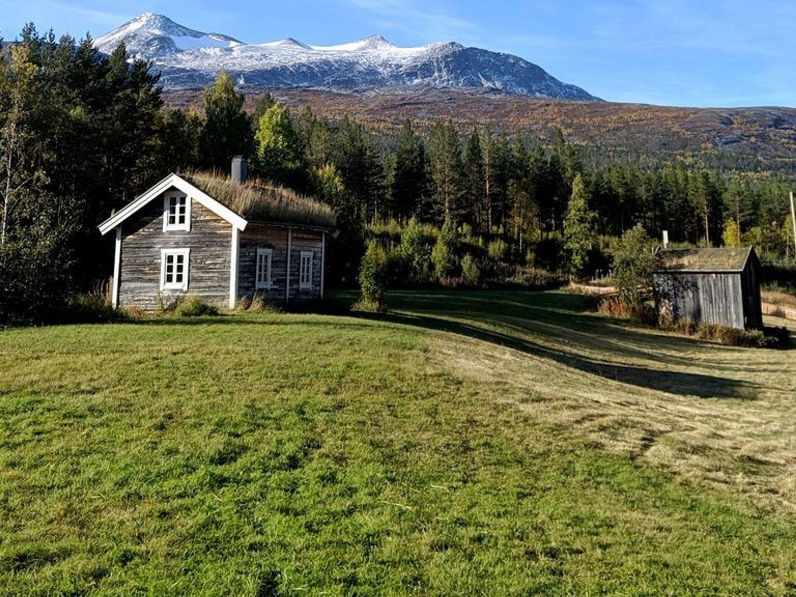 Der Saltfjellet-Svartisen-Nationalpark liegt direkt am Polarkreis. Die Topografie dieser Region ist vielfältig, von hohen Bergen und ...