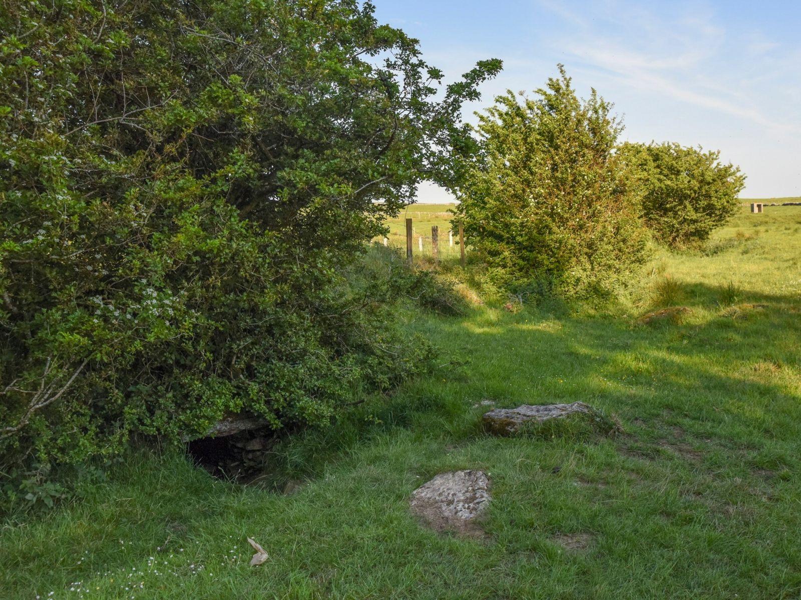 Der unauffällige Eingang zur Oweynagat-Höhle in Rathcroghan, Irland, verrät auf den ersten Blick nichts über seine ...