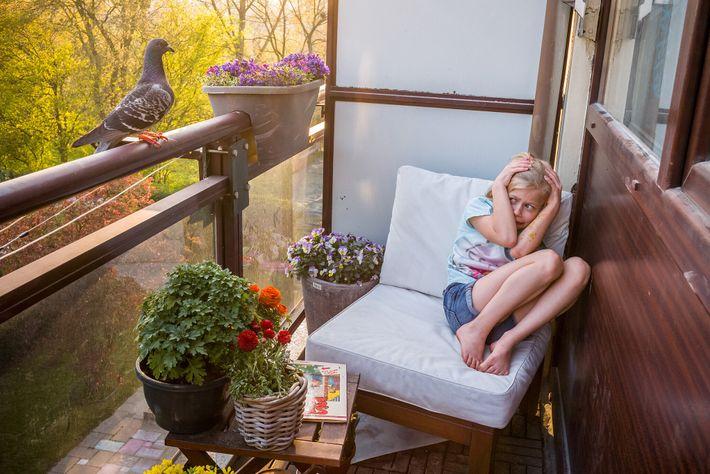 Merel Doest duckt sich, nachdem die Taube Dollie auf dem Balkon ihrer Familie in den Niederlanden ...
