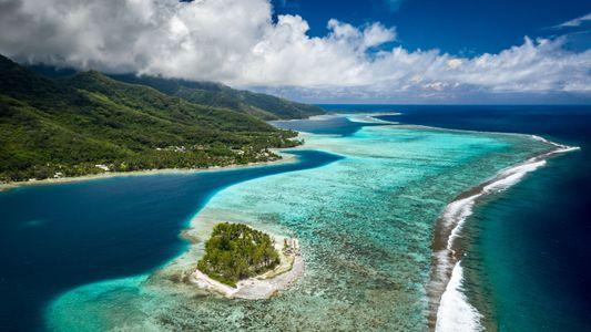 Sylvia Earle und andere Meereswissenschaftler setzen sich für den Schutz der Meeresökosysteme ein